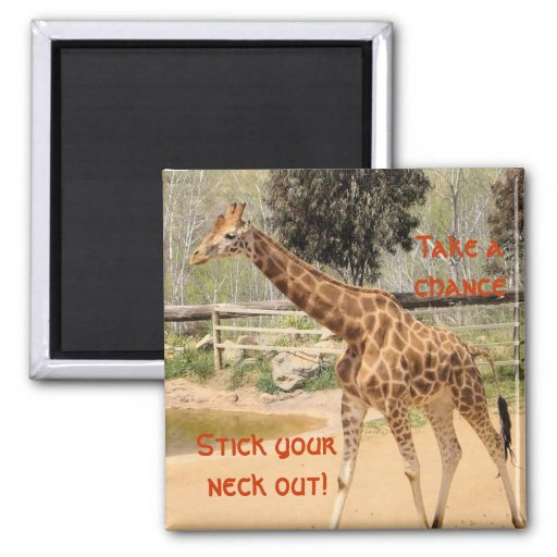 giraffee imán cuadrado