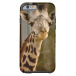 GiraffeiPhone lindo 6
