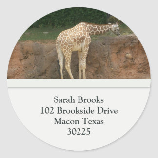 Giraffes Address Labels