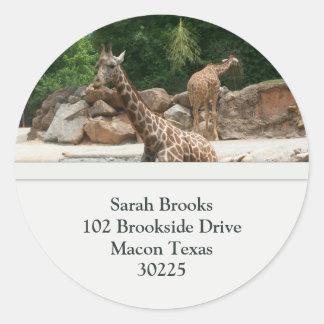 Giraffes Address Labels Classic Round Sticker