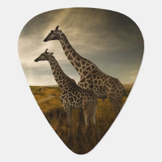 Giraffes and The Landscape Guitar Pick