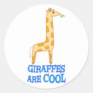 Giraffes are COOL Classic Round Sticker