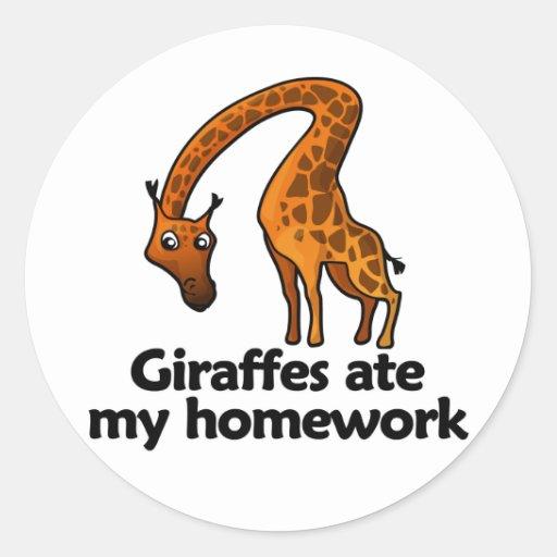 Giraffes ate my homework classic round sticker