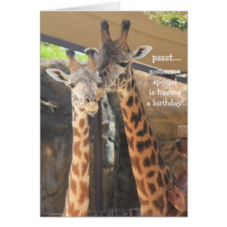 Giraffes Birthday Card for someone special