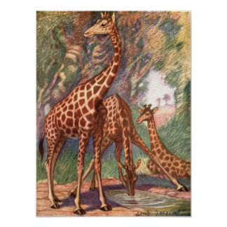 Giraffes by Louis Sargent, Vintage African Animals Poster