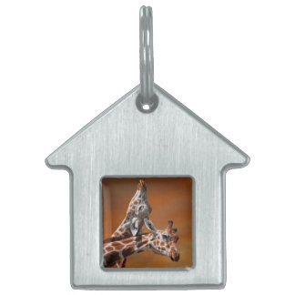 Giraffes couple in love pet ID tag