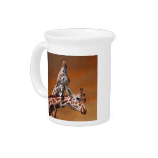 Giraffes couple in love pitcher