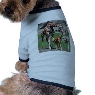 Giraffes Pet Tshirt