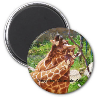 Giraffes giving affection 2 inch round magnet