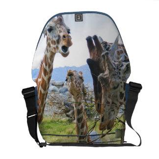 Giraffes Gossiping Rickshaw Messenger Bag