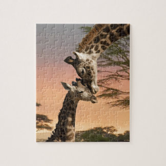 Giraffes Greeting Each Other Jigsaw Puzzle