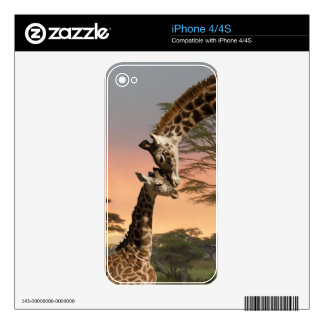 Giraffes Greeting Each Other Skins For iPhone 4
