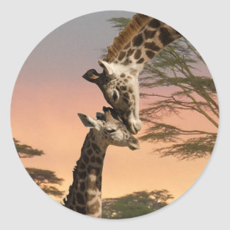 Giraffes Greeting Each Other Classic Round Sticker