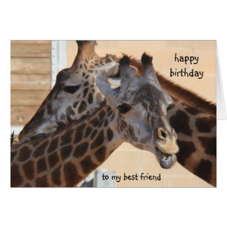 Giraffes Happy Birthday Best Friend, blank inside Greeting Cards