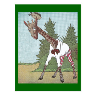 Giraffes Have Very Long Legs Postcard