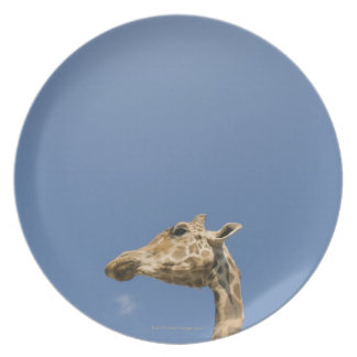 Giraffe's head dinner plates