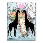 Giraffes in love post card