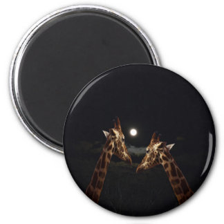 Giraffes_In The Moonlight. Magnet