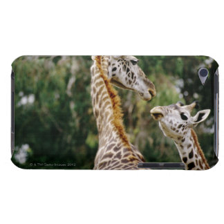 Giraffes iPod Touch Cover