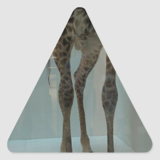 Giraffe's legs (the lions' share?...) triangle sticker