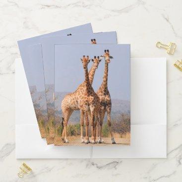 Beach Themed Giraffes Pocket Folder