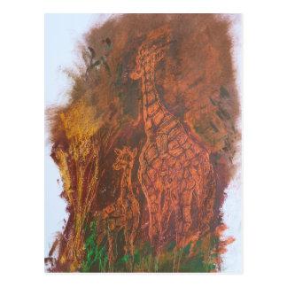 Giraffes. Postcard