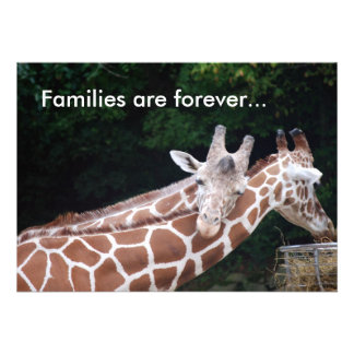 giraffes rubbing necks Families are forever Custom Invite