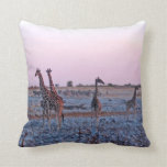 Giraffes Sunset Namibia Africa Pillow