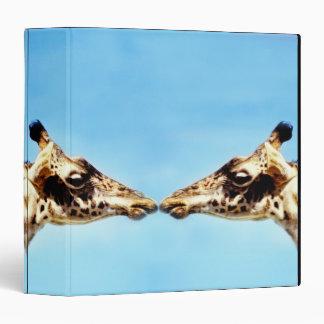 Giraffes touching noses binders