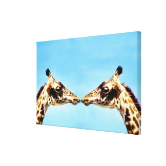 Giraffes touching noses canvas print