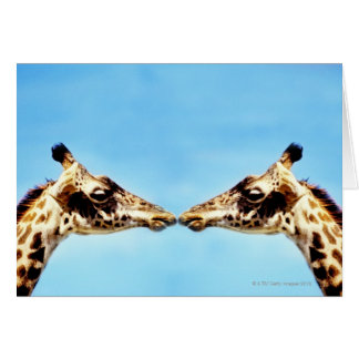 Giraffes touching noses card