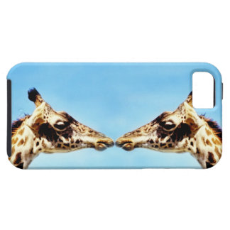 Giraffes touching noses iPhone SE/5/5s case