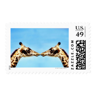 Giraffes touching noses postage stamp