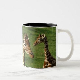 Giraffes Two-Tone Coffee Mug