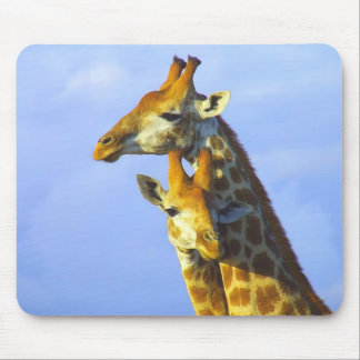 Giraffes under blue sky mouse pad