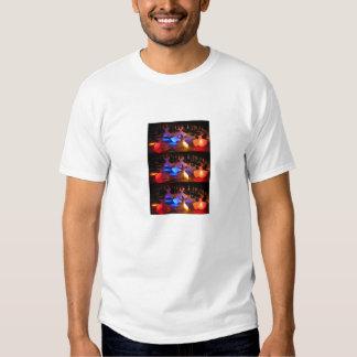 Girar-Derviche-Ceremonia-Cappadocia-turco… Remera