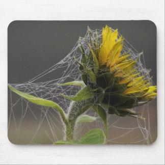 Girasol adornado por el Web de araña Mousepad Tapete De Raton