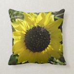 Girasol amarillo almohadas