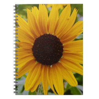 Girasol amarillo del jardín cuadernos