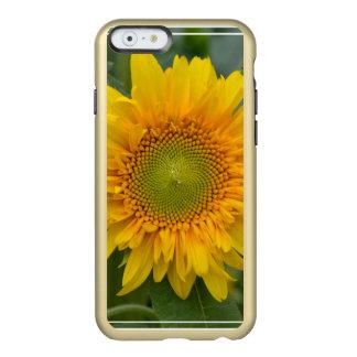 Girasol amarillo funda para iPhone 6 plus incipio feather shine