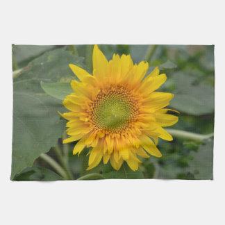 Girasol amarillo toallas de mano