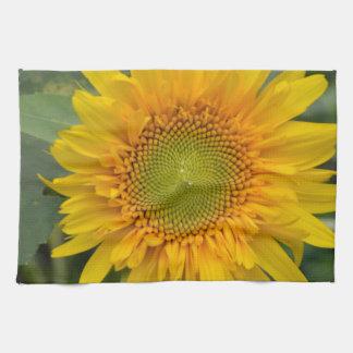 Girasol amarillo toalla de mano