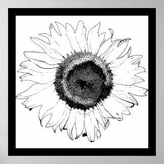 Girasol blanco y negro impresiones
