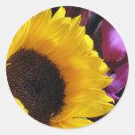 Girasol con el iris púrpura pegatina redonda