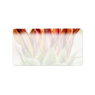 Girasol de florecimiento etiqueta de dirección