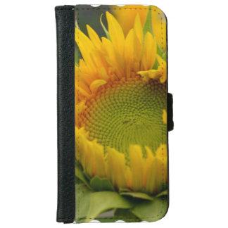 Girasol de florecimiento carcasa de iPhone 6