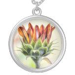 Girasol de florecimiento grimpola personalizada