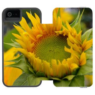 Girasol de florecimiento funda billetera para iPhone 5 watson