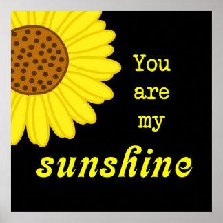 Girasol de la sol poster