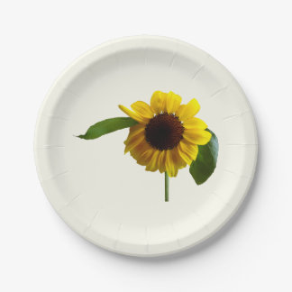 Girasol de oro platos de papel